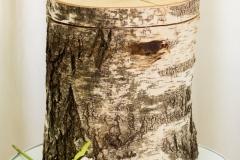 urne-bestattungshilfe-straubing- - 33